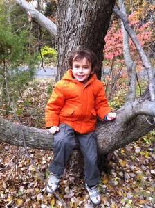 loves to climb trees.